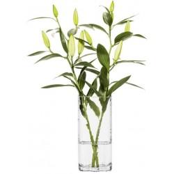 Siluett vase, SEA Glasbruk