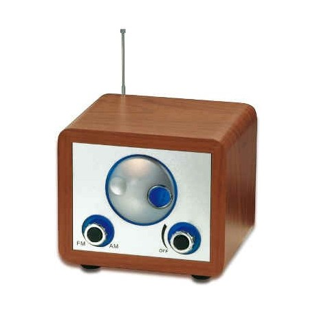 AM/FM radio incl AUX-IN jack,