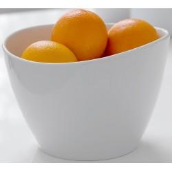 Pisa skål